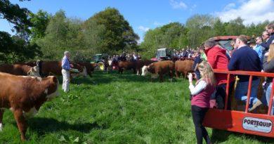 Cumbria Beef Tour Presentation