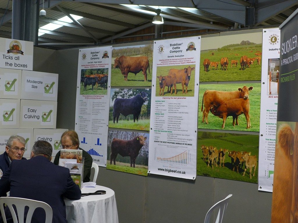 Beef Show Stand Stabiliser